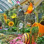 美麗湖室內花園 逾百人輪班照顧
