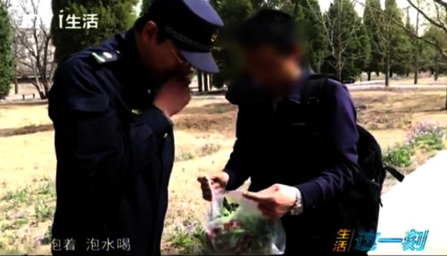 民眾向公園保安展示挖到的野菜。(視頻截圖)