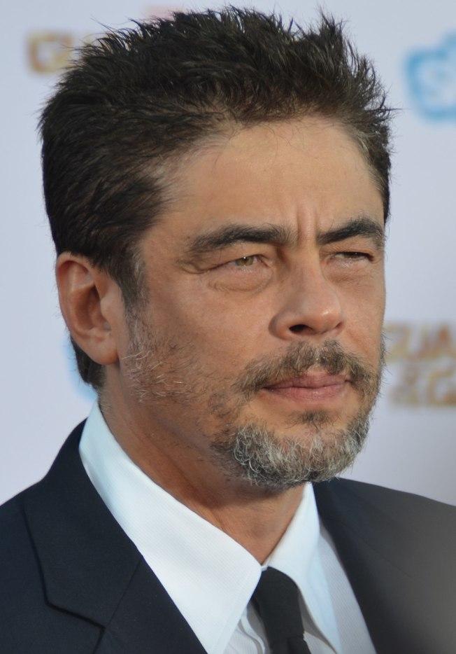 好萊塢導演曾相中男星班尼奇歐狄托洛來飾演賈西亞。(取材自維基百科)