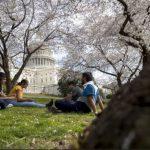 全美最佳公園城市 華府居首 北維阿靈頓第4