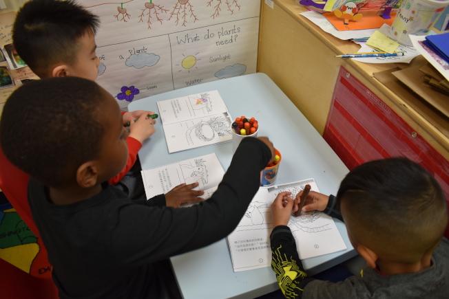 專家相信,愈早讓孩子沉浸在雙語環境中,他們對語言及不同文化的接受度愈高,對大腦發育也有正面影響。(記者顏嘉瑩╱攝影)