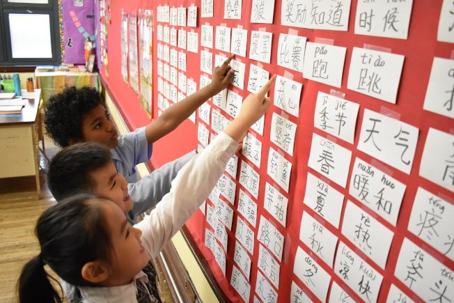 中國勢力崛起,越來越多人開始學中文。(記者顏嘉瑩╱攝影)