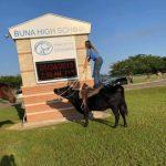 女生騎牛參加畢業典禮