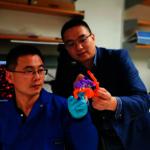 「智慧型」胰島素! UCLA華裔團隊研發  根據血糖值自動釋藥