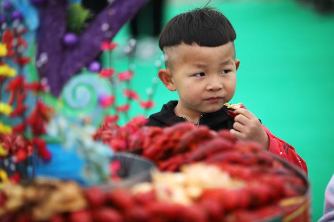 中國「吃貨」熱愛的小龍蝦,恐成生態殺手。圖為小朋友品嘗小龍蝦。(新華社)