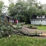 龍捲風襲新州 樹倒、斷電…如珊迪重現