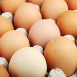 最「髒」的食物之一 你還在直接把雞蛋放冰箱?
