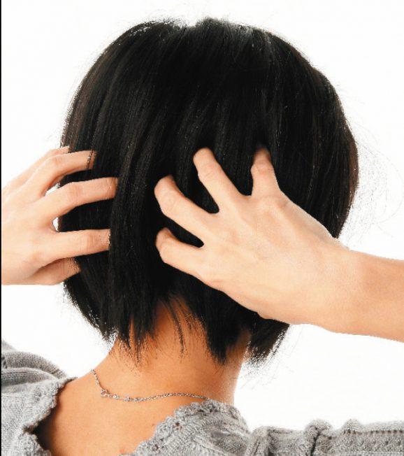 藥草養生術|草本生髮 不怕荷爾蒙致癌