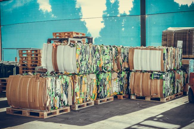 「Trevelyons」包裝廠預備出貨至國外的奇異果。(記者陳昭妤/攝影)