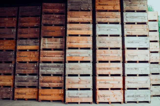 採收下來的奇異果會置放在大型木箱內運送到包裝廠。(記者陳昭妤/攝影)