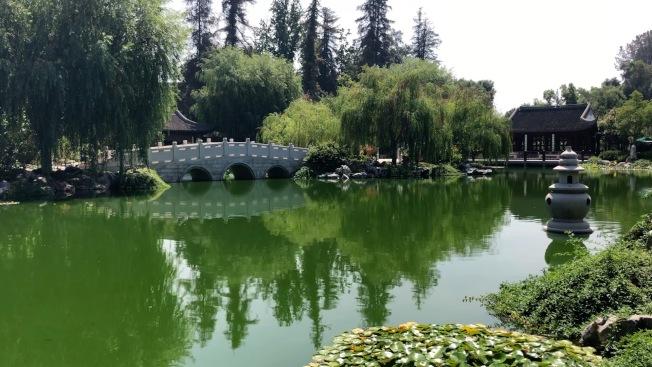 漢庭頓圖書館及植物園中有巨大的中式園林。(記者李雪/攝影)