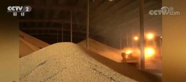 受經貿摩擦影響,前四月中國自美國進口黃豆同比下降逾70%。取自中經網
