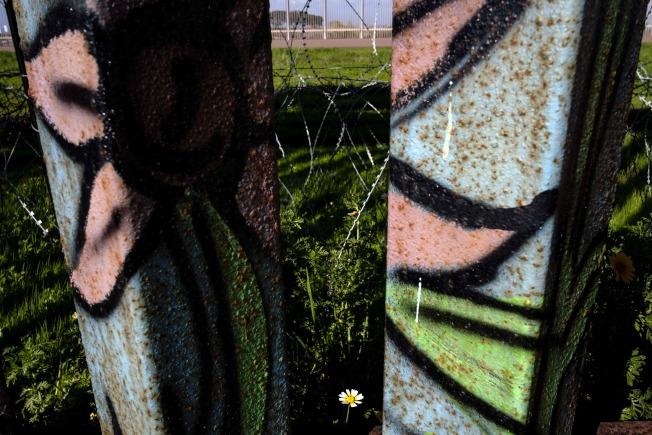 川普派往邊界協助防堵移民的美軍,奉命從下月起支援粉刷邊牆。圖為美國與墨西哥金屬邊牆上的塗鴉。(Getty Images)