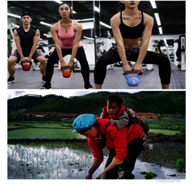 李伯寧醫師表示,健身房常做的負重、深蹲等動作,就有如古早農忙時背小孩下田插秧,反而容易造成骨盆腔肌肉及陰道鬆弛。(取材自臉書)
