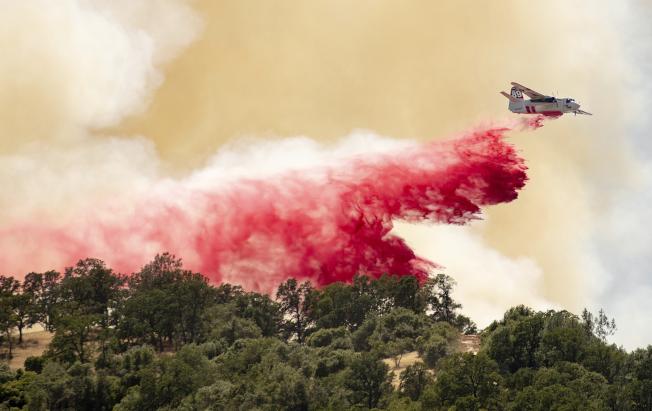 破紀錄的熱浪席捲美西,由於天乾物燥,加州部分地區已引發野火。圖為消防飛機在加州蘭姆西灑水灌救一場野火。(美聯社)