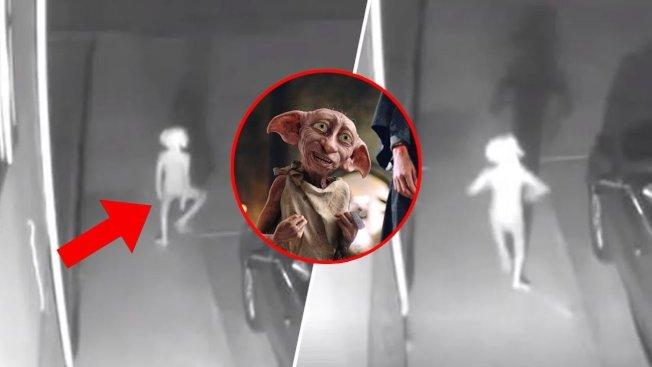 美國科羅拉多州科羅拉多泉市(Colorado Springs, CO)一位居民日前在臉書貼上一段自家監視器拍攝的影像,只見一個矮小的不明人形生物在夜色中手舞足蹈,詭異的畫面在社群媒體引發熱議。有網友覺得,不明生物很像是《哈利波特》系列的小精靈多比。畫面翻攝:Facebook/Vivian Gomez、pottermore.com