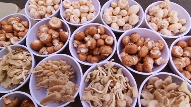 白色食物常被認為缺乏營養,但菇類卻是例外。(取自YouTube)