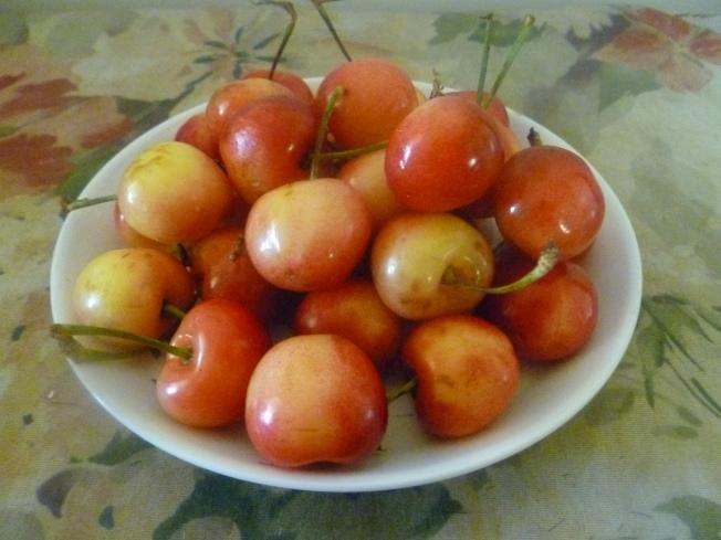來尼爾櫻桃被視為頂級櫻桃。