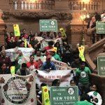 綠燈法案 紐約州長簽字  無證客可申請駕照
