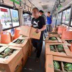 鄭州女大生抽中3萬斤西瓜 全送公交司機