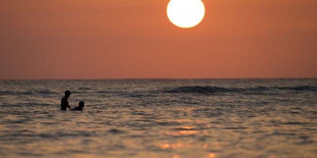 泳客在威基基海灘戲水。(美聯社)