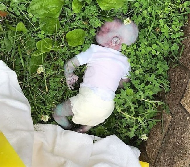 被當做死嬰的玩偶。(警方提供)