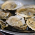 海水溫度升高 東岸食肉菌病例增加