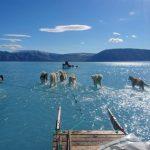 北極變得有多熱? 這張照片令人震驚