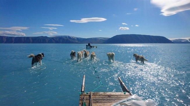 丹麥氣象研究所的科學家上週在格陵蘭北部,拍攝冰層提前融化令人震驚的照片於網路瘋傳。圖/取自twitter.com/RasmusTonboe