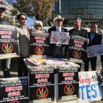 紐約州議會本屆會期不通過大麻法案 華社歡呼