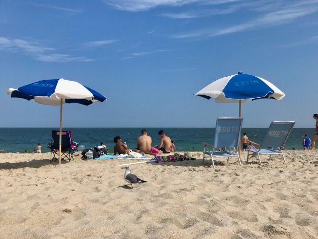 夏天去哪玩 新州最佳海灘在這