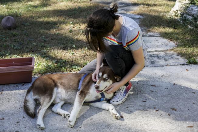 媽媽對狗的態度是孩子養狗的決定因素。(美聯社)