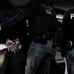 有綠卡曾定罪 也可能成ICE大執法目標