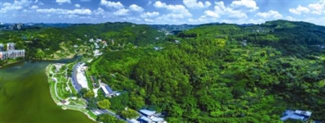 龍泉山城市森林公園。(取材自成都晚報)