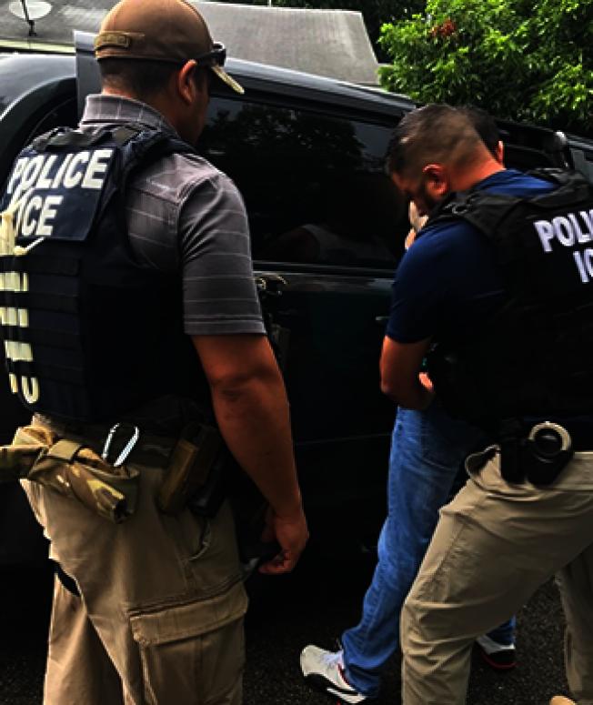 圖為ICE探員過去四天在德州南部逮捕54名重大犯行的無證移民。(ICE官網)