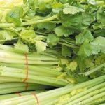 芹菜為何只吃莖從不吃葉?你把有營養的部分丟掉了