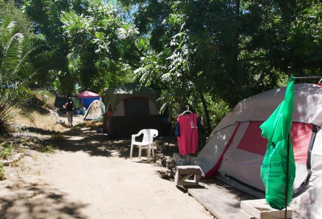 遊民居住在Roosevelt公園內。(記者梁雨辰/攝影)