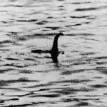 這就是尼斯湖水怪?南極出土15噸重「異類」恐龍化石