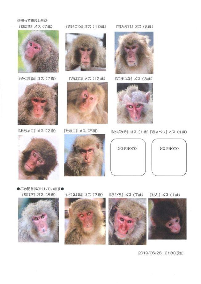園方發布14隻脫逃猴子的名字及長相特徵。(取自臉書)