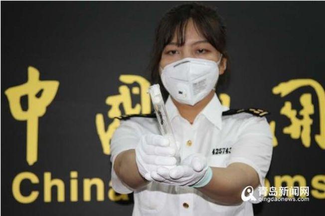 青島郵局海關關員展示截獲的活體螞蟻。(取材自青島新聞網)
