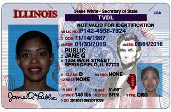 伊州從2013年11月起,就開始核發「臨時訪客駕照」給無證客。(伊州州務卿官網)