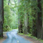 金州失色 加州列全美最差退休州之一