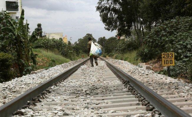 印度鐵路公司擬用擴音器播放蜜蜂飛翔的嗡嗡聲,嚇跑在鐵軌上的大象,避免他們被列車撞死。 歐新社