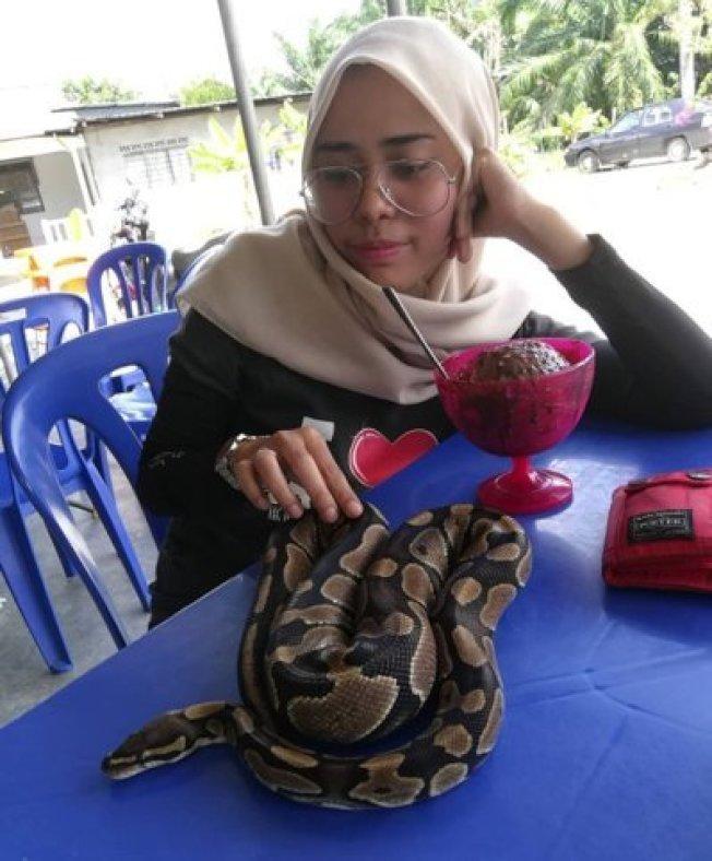 女子事後表示自己並不討厭蛇,出於保護姪子才將蛇殺死,並秀出與其牠爬蟲相處的照片。圖擷自推特@ybmisai97