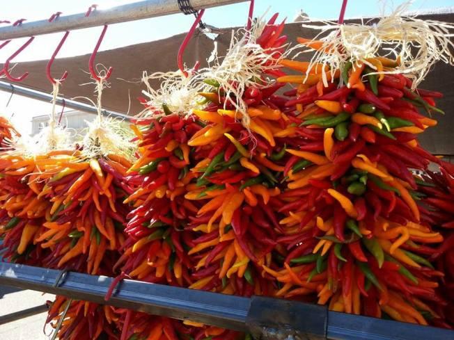 美國新墨西哥州和科羅拉多州州長吵哪一州生產的辣椒更棒。翻攝臉書Pueblo Chile & Frijoles Festival
