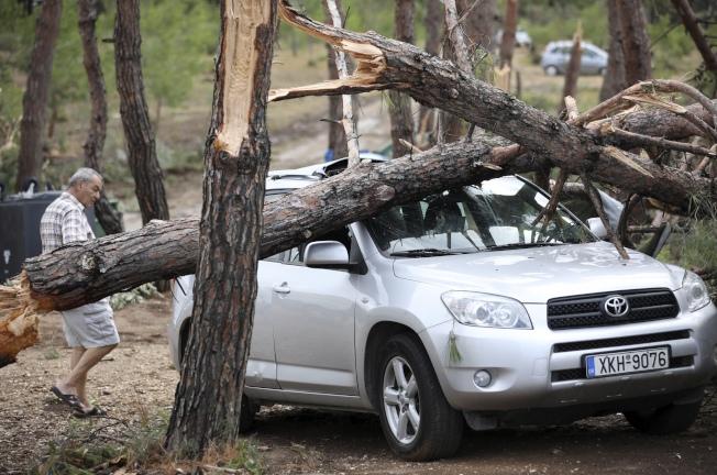 有被吹到大樹壓扁汽車。(美聯社)
