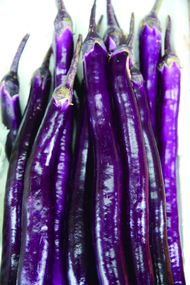 紫色茄子含花青素,能養顏兼護眼。本報資料照片