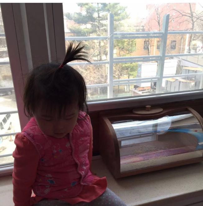 家中若有十歲以下孩童,窗戶裝設窗欄可有效防範孩童向外跌落。(讀者提供)