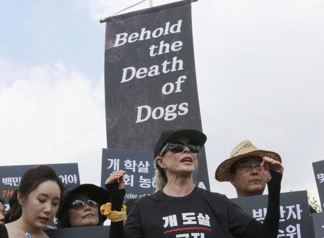好萊塢女星金貝辛格(中)加入南韓動保人士抗議行列。(美聯社)