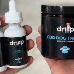 搶大麻CBD商機 19歲青年創業 主打有機狗食